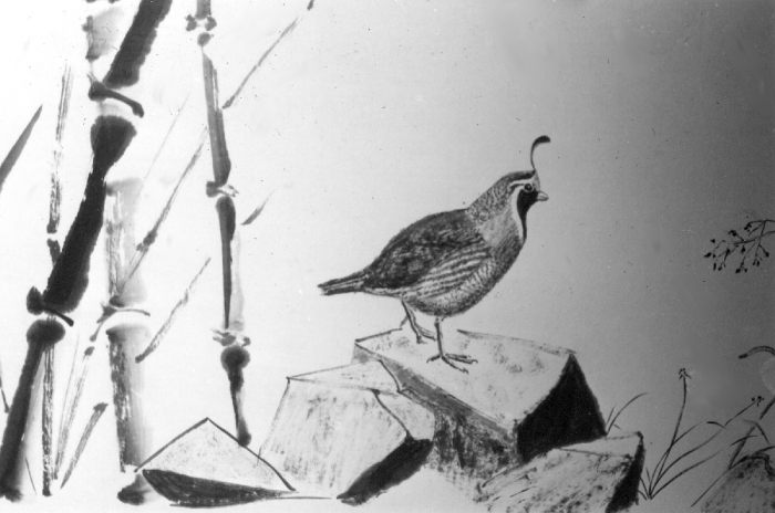 Quail with bamboo