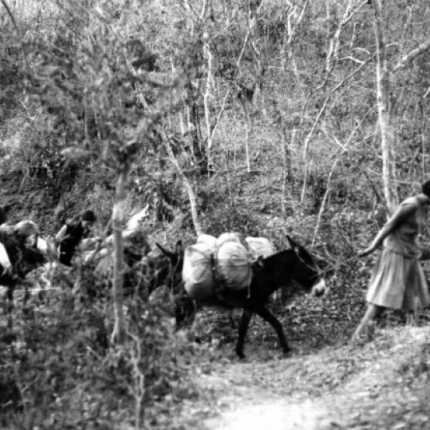 Students in the Sierra Madre